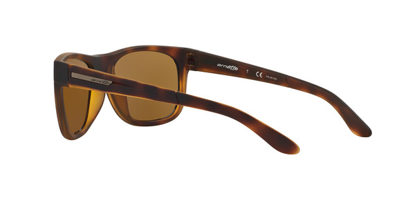 fa89a1df3d Arnette AN4206 215283 Sunglasses | Visual-Click