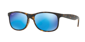 RAY-BAN Andy RB4202 710/9R SHINY HAVANA